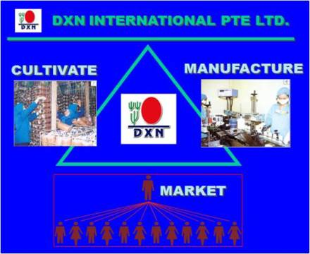 DXN Pharmaceutical Company