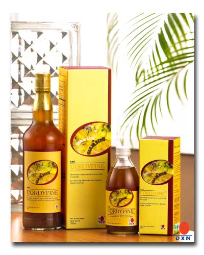 The Cordypine is a product of DXN Global - the world class Ganoderma manufacturer..