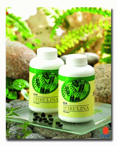 The Spirulina is a product of DXN International - the world class Ganoderma manufacturer..